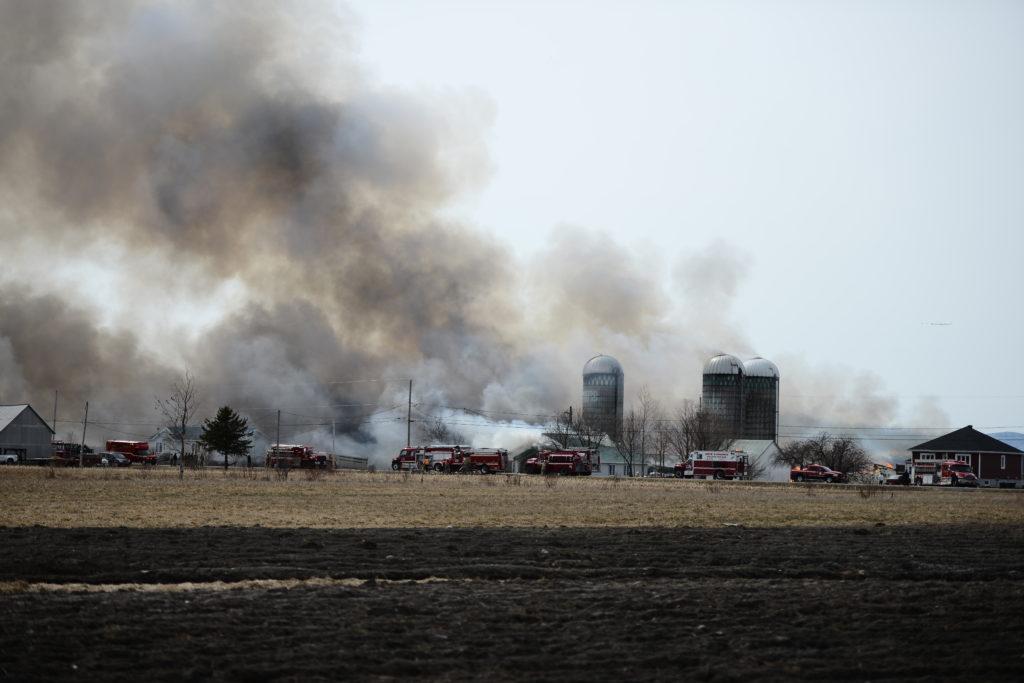 Kamouraska : la Ferme Rayon d'Or est la proie des flammes