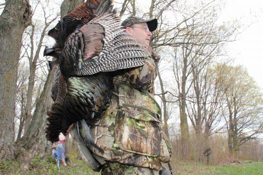 Dindon: maximisez vos heures de chasse