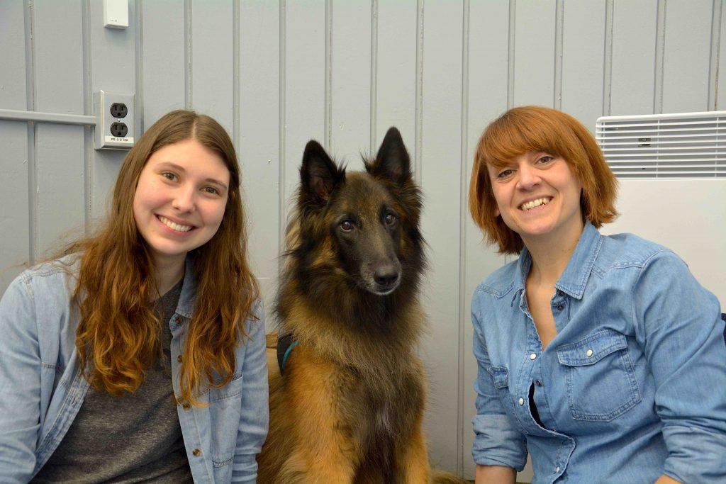 Cégep de La Pocatière : de la zoothérapie pour une meilleure réussite aux examens de fin de session