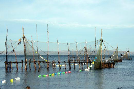 Une exposition sur la pêche à l'anguille disponible sur internet