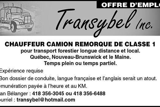CHAUFFEUR CAMION REMORQUE DE CLASSE 1