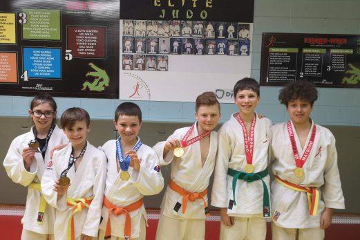 Trois champions régionaux en judo
