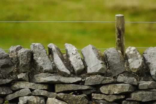 Le bornage: comment établir les limites?